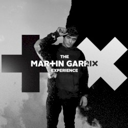 Martin Garrix Ft. Macklemore & Patrick Stump Of Fall Out Boy - High On Life