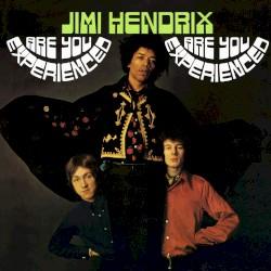 The Jimi Hendrix Experience - Manic Depression